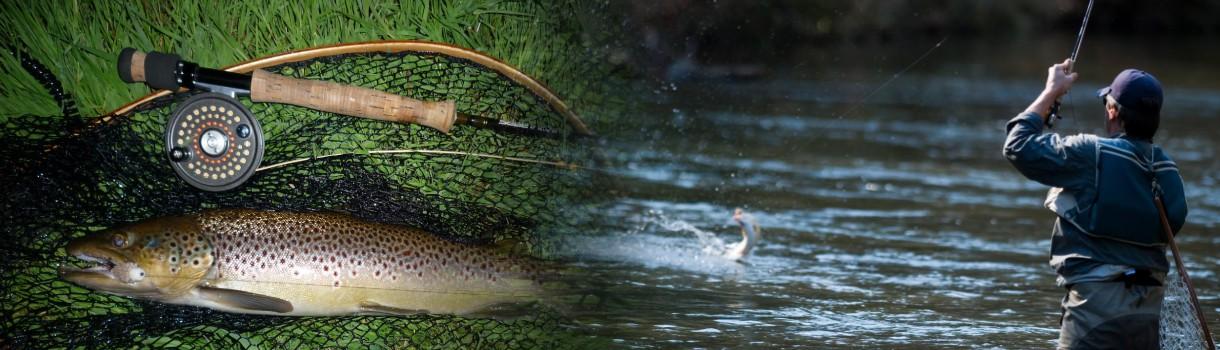 Davos fishing slider